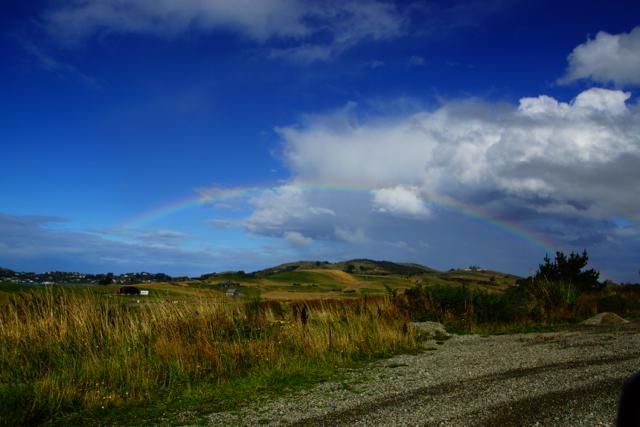 Oamaru.Dunedin-04