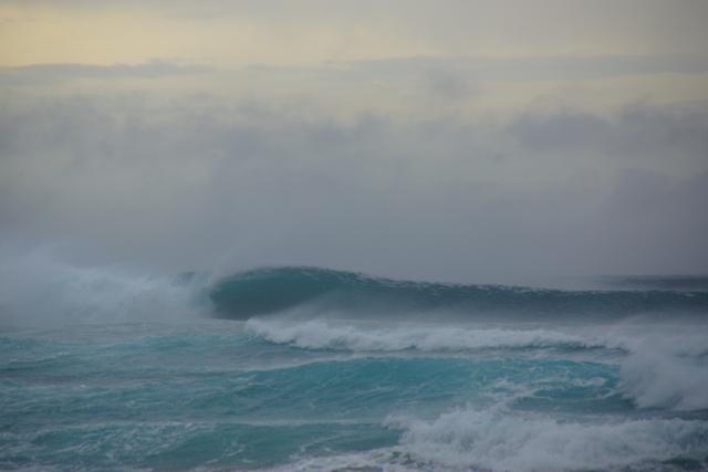 Oamaru.Dunedin-39