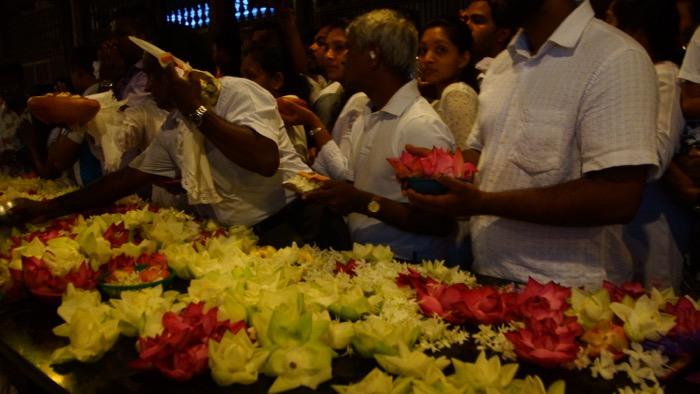 srilanka-02- - 26